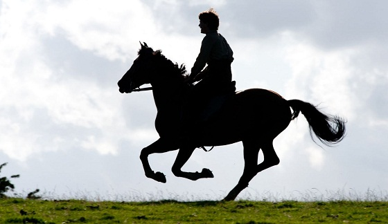 Jeremy Irvine y Joey en War Horse