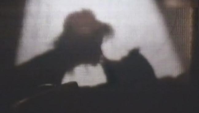 Las sombras chinescas del Pato Howard