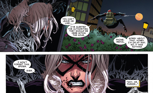 Spiderman Superior - Gata Negra
