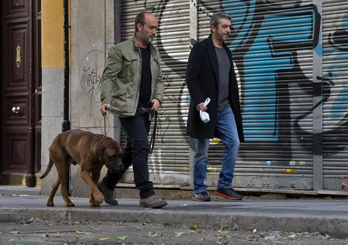 Truman, Javier Cámara y Ricardo Darín en un momento de la película